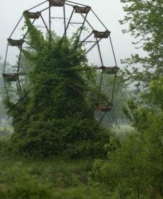 abandoned amusement parks | ... this abandoned amusement park really was: Chippewa Lake Park in Ohio