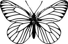 clip art outline butterflies - Google Search