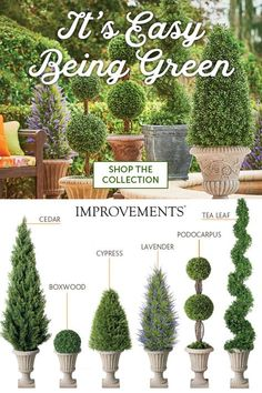 Topiary No watering or pruning! Add gorgeous greenery to your indoor or outdoor living space without the work. Choose the best lifelike topiary for your needs. Mix and match for a customized look, and don't forget the decorative urn! Topiary Garden, Topiary Trees, Boxwood Garden, Porch Topiary, Porch Urns, Outdoor Topiary, Boxwood Hedge, Garden Urns, Garden Plants