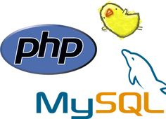 Looking out for PHP developers who can truly understand your business requirements and provide meaningful solutions?