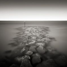 Steen Doessing©