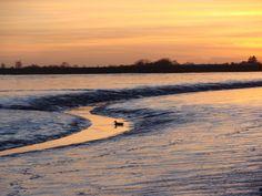 Wilhelmshaven, Sonnenuntergang am Meer www.erholung-wilhelmshaven.de