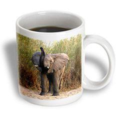 3dRose - Wild animals - Elephant - 15 oz mug, White