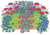 Bunte Pflanzideen: Gartencenter Ostmann grün erleben