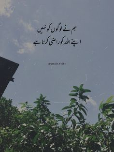 Best Islamic Quotes, Quran Quotes Love, Allah Quotes, Truth Quotes, Urdu Quotes, Best Quotes, Touching Words, Heart Touching Shayari, Hello Pakistan