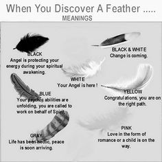 Feather Divination, type of Geomancy. Scrying with Birds. When you discover a feather...