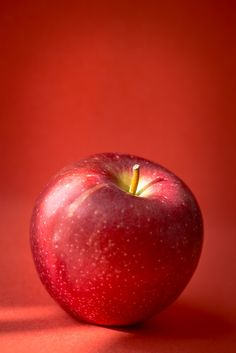 """""""Shades of Red"""" by Karena Brown Fruit Photography, Still Life Photography, Apple Fruit, Red Apple, Apple Picture, Boarder Designs, Fruits Images, Still Life Fruit, Funny Phone Wallpaper"""
