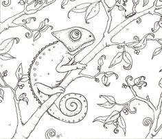 Chameleon Coloring Page MQVDA - Coloring Pages For Kids