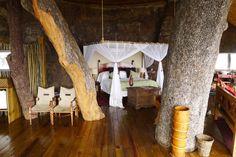 Stein und Baum: Im afrikanischen Sambia steht dieses schöne Refugium,...
