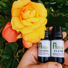 Have you found our shiny new Instagram page?!  Check us out!   #essentialoils #summer #nature #health #flowers #pretty #colours #naturalhealth #holistichealth #aromatherapy New Instagram, Coffee Bottle, Natural Health, Aromatherapy, Essential Oils, Colours, Pure Products, Photo And Video, Check