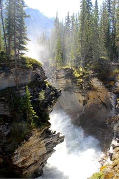 Athabasca Falls is a waterfall in Jasper National Park on the upper Athabasca River, approximately 30 kilometres south of the townsite of Jasper, Alberta, Canada, and just west of the Icefields Parkway on dirait la forêt de twilight Places To Travel, Places To See, Places Around The World, Around The Worlds, Beautiful World, Beautiful Places, Beautiful Park, Landscape Photography, Nature Photography