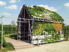 Eathouse, the temporary house you eat. Made of edible greens.