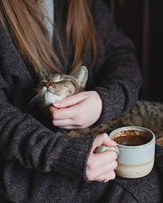 This photo is perfection.warm cozy sweater, hot cocoa and a soft, warm purring kitty Crazy Cat Lady, Crazy Cats, I Love Cats, Cute Cats, Photo Instagram, Pets, Cats And Kittens, Kitty Cats, Fur Babies