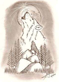 Algunos dibujos propios  Wolf Drawing projects and Drawings