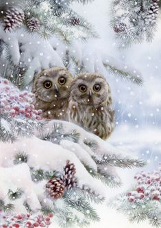 Leading Illustration & Publishing Agency based in London, New York & Marbella. Christmas Scenes, Christmas Animals, Christmas Images, Christmas Art, Owl Pictures, Winter Pictures, Owl Art, Bird Art, Hirsch Illustration