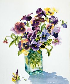 Pansies, backlit by Ann Mortimer