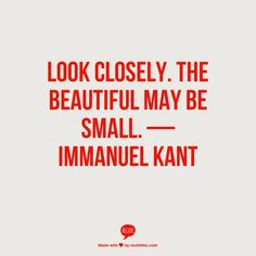 Look closely. The beautiful may be small.  — Immanuel Kant