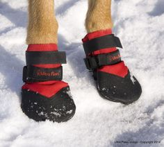 Ultra Paws Durable Dog Boots, set of four, red