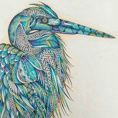 animal kingdom colouring book - Google Search
