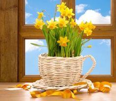jarní květinová dekorace...