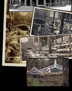 Surrounded by the giant coastal mountain redwoods of Santa Cruz, you'll find the historic Brookdale lodge. The Brookdale Lodge opened its do...