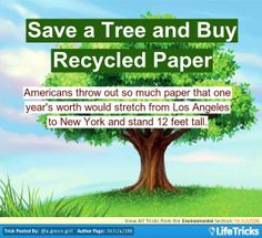 Environmental - Save a Tree and Buy Recycled Paper