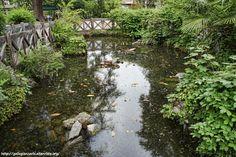 Villa Prever - the pond turtle - laghetto delle tartarughe -