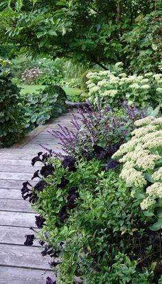 Kulkuväylä puutarhassa, vehreä pihapolku / Garden Pathway