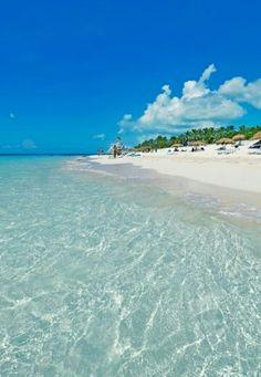 En oferTravel nos gusta recomendar los Cayos de Cuba, quizá sea el encanto del mar turquesa. La segunda gran barrera coralina del mundo, ideal para bucear.