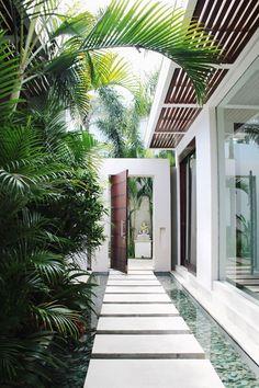 Contemporary side walk / Pasillo lateral contemporáneo con plantas y agua