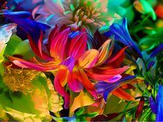 Trabalho do fotógrafo Torkil Gudnason, utilizando flores e luzes em estúdio.
