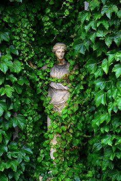 Statue at Belton House, Lincolnshire, England. Vines creeping over a statue. Dream Garden, Garden Art, Garden Design, Formal Gardens, Outdoor Gardens, Garden Statues, Garden Sculpture, Belton House, Parcs