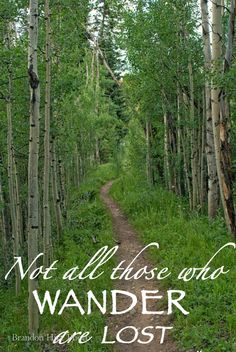 Not all who wonder are lost // Travel Quotes