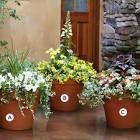 deck planter ideas - Google Search