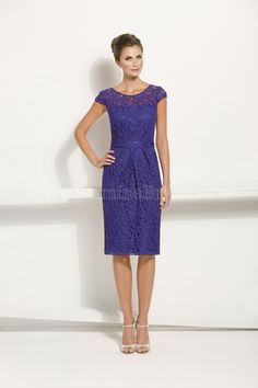 Jasmine Bridal Mother of the Bride-Groom Dress Jasmine Black Label Style M170018X in Grape.This luxurious and extravagant lace dress will make a statement at any event. The dress lets the lace speak for itself and features a scoop neckline and sheath skirt.