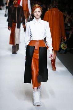Fendi Ready To Wear Fall Winter 2015 Milan