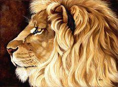 painting wild places | true categories african wildlife art big cat art watercolor pencil