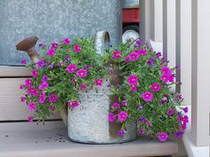 Flower Planters n Containers :: rusty Watering Can by image by sangaree_KS - Photobucket Beautiful Flowers, Flower Pots, Garden Containers, Plants, Planting Flowers, Flower Planters, Flowers, Amazing Gardens, Garden