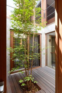 Pergola With Retractable Roof Indoor Courtyard, Internal Courtyard, Courtyard House, Indoor Garden, Outdoor Gardens, Landscape Design, Garden Design, House Design, Interior Garden