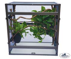 ChamEO Cage Bundle | ChamEO Store