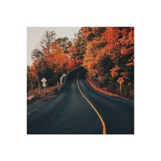 Tumblr ❤ liked on Polyvore featuring pictures, autumn and pics