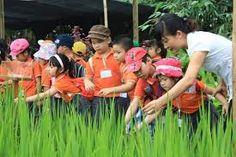 https://sachkynanghay.wordpress.com/2017/05/13/day-tre-ky-nang-song-bang-cach-hoa-minh-cung-thien-nhien/