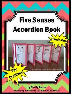 ive Senses Accordion Book: Your students will love this hands-on five senses craftivity. The students will make a five senses accordion book...