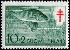 What FISH stamps do you have? - Page 13 - Stamp Community Forum Red Cross, Stamp Collecting, Postage Stamps, Art Forms, Finland, Old Things, Fish, History, Artwork