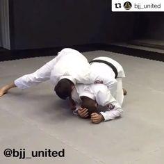 Turtle drills