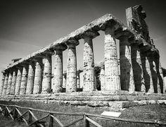 .: Temple :. #paestum #campania #salerno #vscoartist #vscoitaly #prisma #mare #sunset #vsco #sunset #aftermoon #bw #blackandwhite #monochrome #shot #photo #temple #greek #roman #zeus #divinity - May 02 2017 at 11:17PM