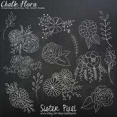Chalk Flowers Clip Art Graphics in White Hand Drawn by SisterPixel, $3.50
