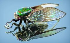 Wallace Chan - black opal and diamond cicada (looks like a fly to me) Insect Jewelry, Opal Jewelry, Animal Jewelry, Jewelry Art, Jewelry Design, Jewellery, Jewelry Rings, Fashion Jewelry, Modern Jewelry