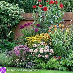 Are you glad summer is coming? Double click the pic if you do! Summer Is Coming, Instagram Feed, Yards, Landscaping, Real Estate, Backyard, Plants, Pictures, Beautiful