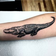 Raf Collazo @rafcollazo Pittsburgh #tattwho #tattoo #tattoos #tattooartist #tattooartists #tattooist #tattooer #artist #tattoolife #instaart #instatattoo #tattoodesign #tattooed #ink #inked #tattooaddict #tattooart #art #photooftheday #instagood #instastyle #instabeauty #bodyart #tattooidea #tattoooftheday #alligator #gator #blackwork #dotwork #pittsburgh